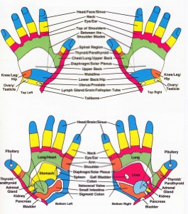 Heart and Soul Reflexology Hudson Wi